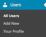 """Menu """"Users"""""""